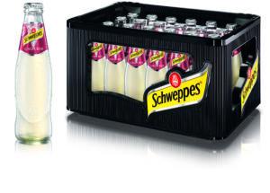 Schweppes Ginger Beer 24x0,2l Mehrweg Glas